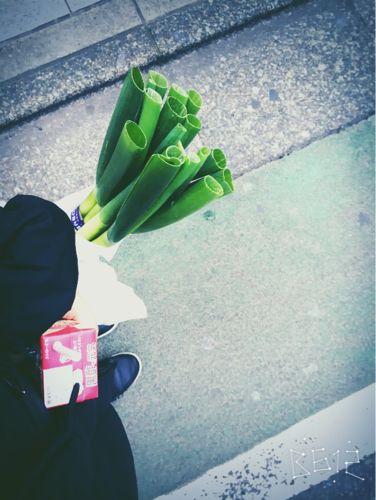必ず買う野菜の話_d0021510_21411650.jpg