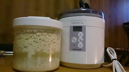 豆乳ヨーグルトできました♪_f0337851_10493556.jpg