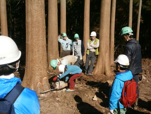 「木を植えよう・植林体験 」_c0069972_15374835.jpg