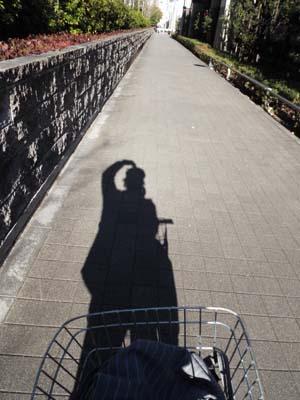 ぐるっとパスNo.4 汐留パナミュー「パスキン展」まで見たこと_f0211178_16575410.jpg