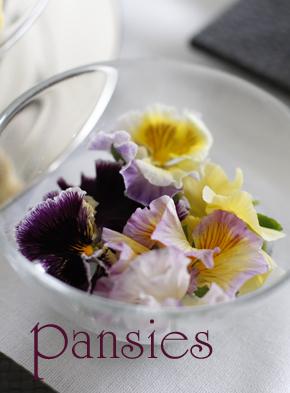 lovely pansies ^^_d0113182_185644100.jpg