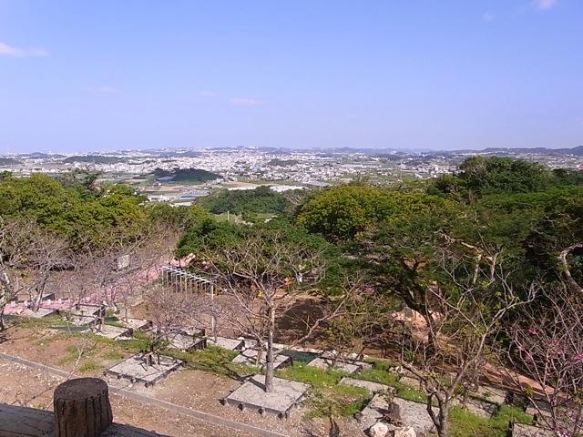 八重瀬町の桜_e0158687_12523159.jpg