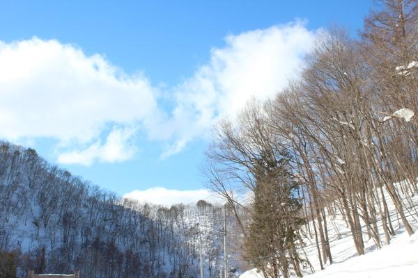 久しぶりの青い空がとてもうれしい_f0227395_13594874.jpg