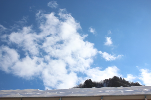 久しぶりの青い空がとてもうれしい_f0227395_13595750.jpg