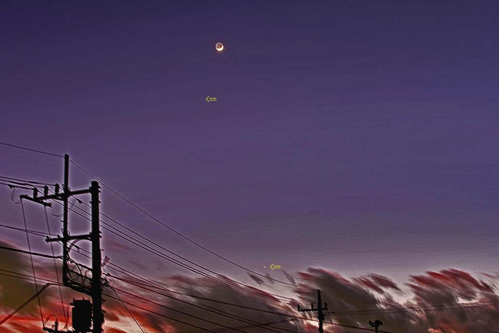 アクセス55万アップ/イカル/オオアカハラ/オカヨシガモ/ラブジョイ彗星/月・金星・火星・海王星_b0024798_1558265.jpg