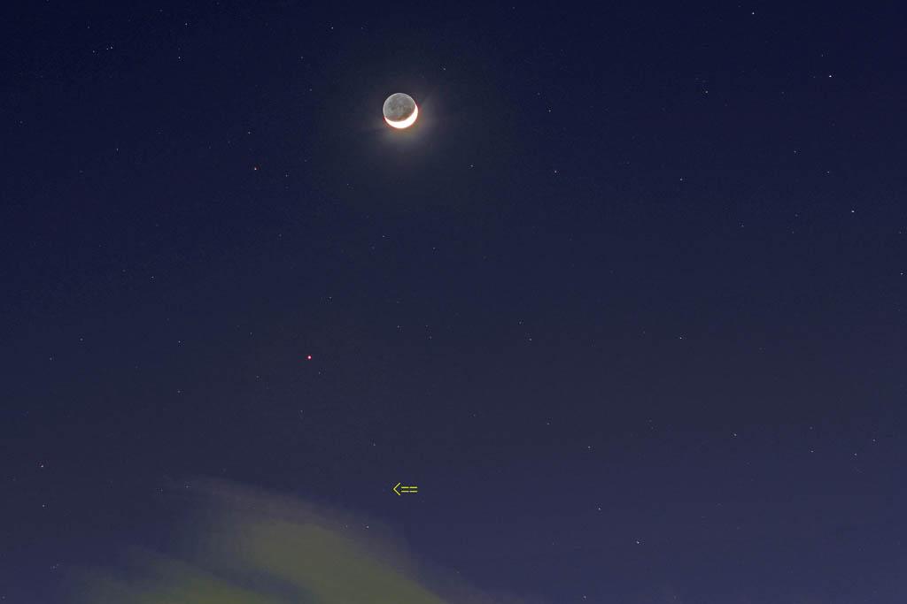 アクセス55万アップ/イカル/オオアカハラ/オカヨシガモ/ラブジョイ彗星/月・金星・火星・海王星_b0024798_15584428.jpg
