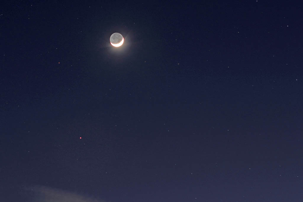 アクセス55万アップ/イカル/オオアカハラ/オカヨシガモ/ラブジョイ彗星/月・金星・火星・海王星_b0024798_15585557.jpg