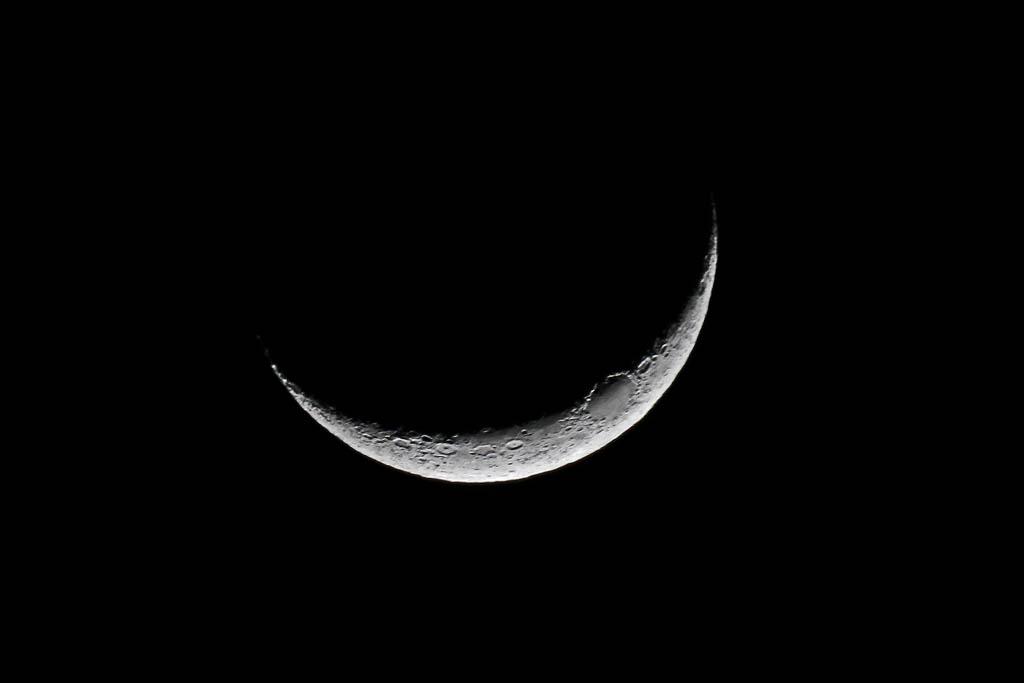 アクセス55万アップ/イカル/オオアカハラ/オカヨシガモ/ラブジョイ彗星/月・金星・火星・海王星_b0024798_1559147.jpg