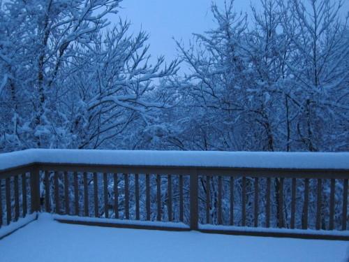 外は大雪・・なので、日本文学が無料で読めるサイト_d0240098_22192445.jpg