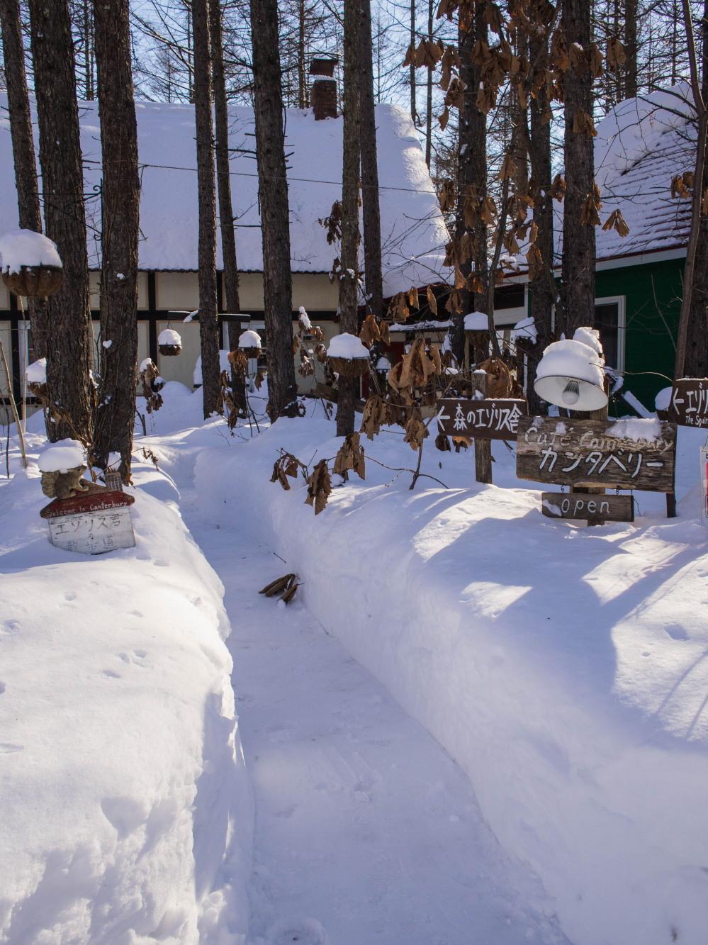 中札内村の冬らしい朝にエゾリス君~ブログが1000回目を達成~_f0276498_19341999.jpg