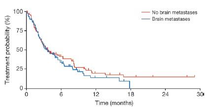 既治療非小細肺癌に対するアファチニブの中枢神経系に対する効果_e0156318_10352739.jpg