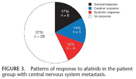 既治療非小細肺癌に対するアファチニブの中枢神経系に対する効果_e0156318_10373916.jpg