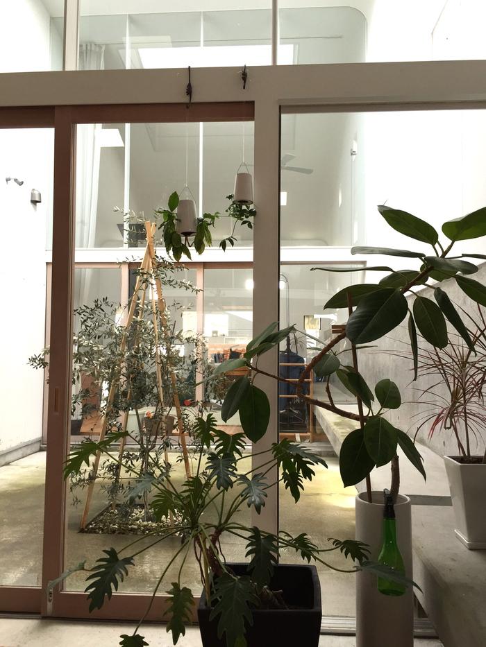 空中の庭園_e0189939_1935178.jpg