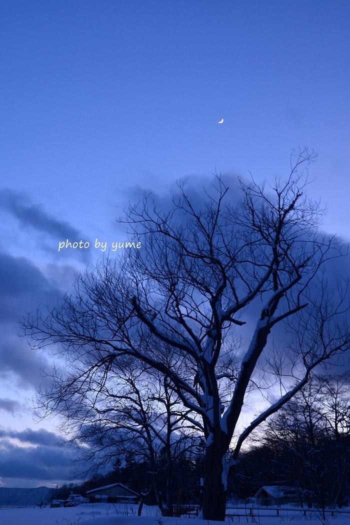 Moon_a0322950_8341628.jpg