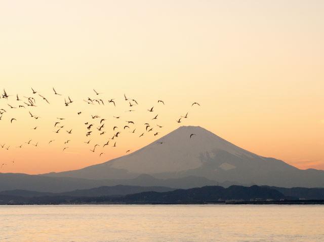 富士山の夕景_a0257652_16233777.jpg