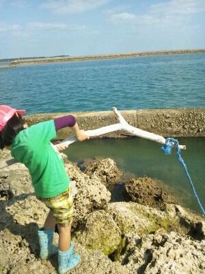 ココカリ、釣り_e0131462_14524833.jpg