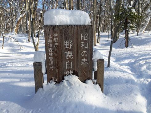 原生林をスキーで歩く・1_c0189970_11135856.jpg