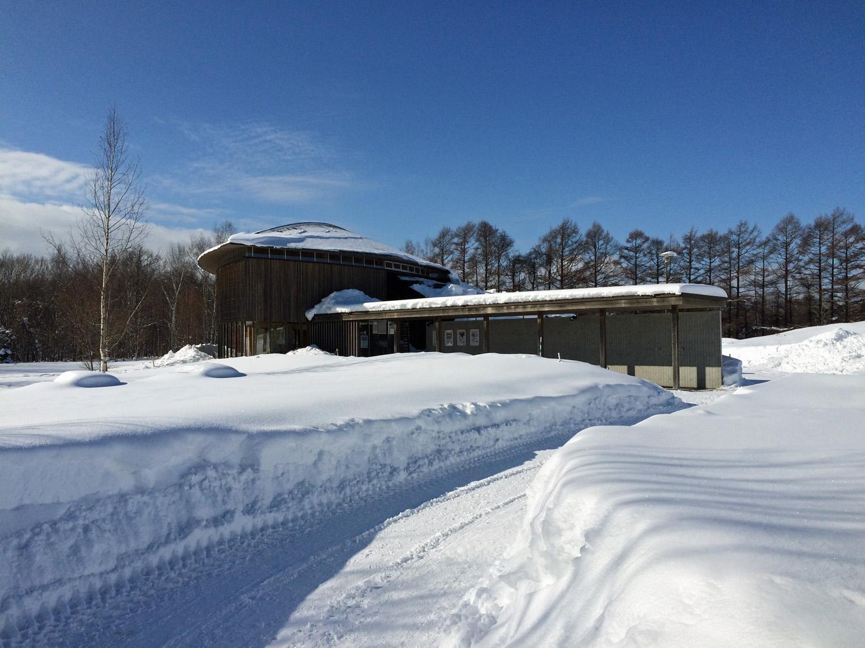 原生林をスキーで歩く・1_c0189970_6492822.jpg