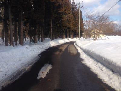 雪の中へ_c0120375_22324442.jpg