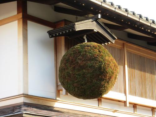 GIAPPONE  1週間目ダイジェスト版ーー日本滞在2015_c0179785_16473373.jpg