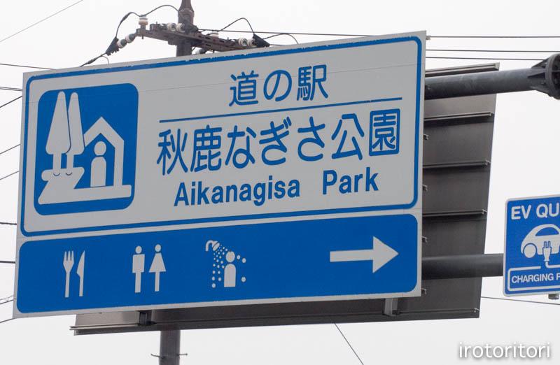 旅日記 その2  (オオバン・キンクロハジロ・マガモ)  2015/01/22_d0146592_2364093.jpg