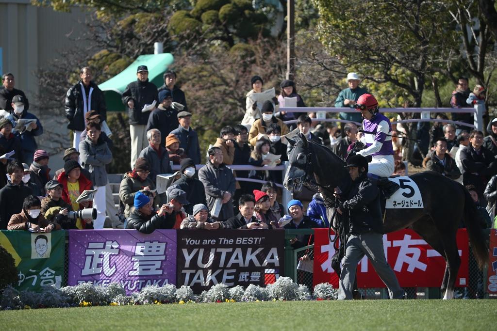 2015年1月18日 日経新春杯(GⅡ)_f0204898_0253082.jpg