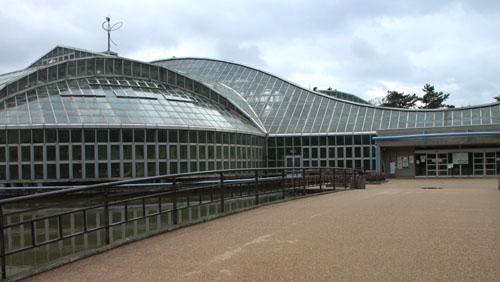 植物園で温室へ_e0048413_1946767.jpg