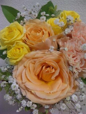 blog;花咲くとき_a0103940_21210321.jpg
