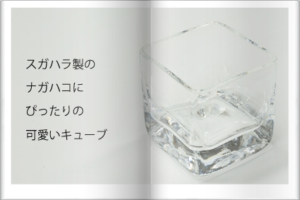 東京ドーム出展商品⑥ ~TWF NEWS 7_d0217944_144051.jpg