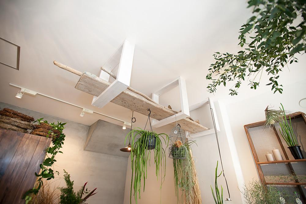 事務所改装で、レトロ新しい花屋さんに! -後編-_a0163962_14594718.jpg