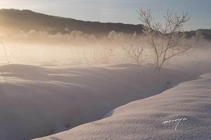 雪原の朝_c0085877_18295545.jpg