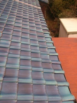 板橋区の徳丸で、屋根の上に・・・?_c0223192_21491668.jpg