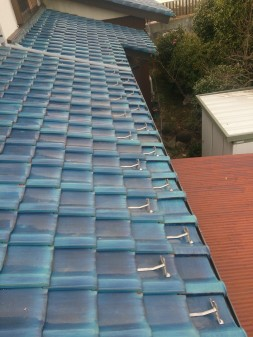 板橋区の徳丸で、屋根の上に・・・?_c0223192_21494799.jpg