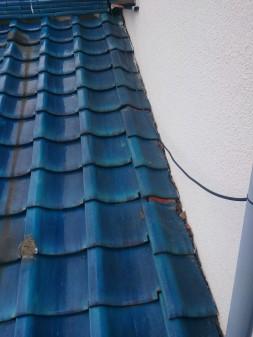 板橋区の徳丸で、屋根の上に・・・?_c0223192_21501124.jpg