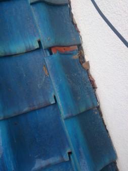 板橋区の徳丸で、屋根の上に・・・?_c0223192_21502328.jpg