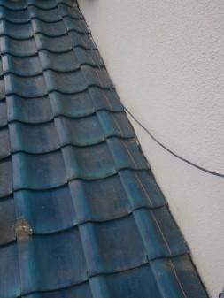 板橋区の徳丸で、屋根の上に・・・?_c0223192_21505289.jpg