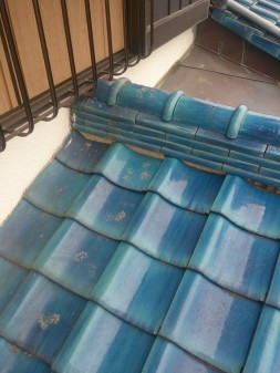 板橋区の徳丸で、屋根の上に・・・?_c0223192_21523040.jpg