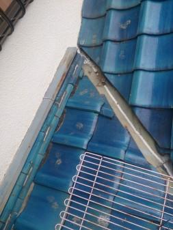 板橋区の徳丸で、屋根の上に・・・?_c0223192_2152931.jpg
