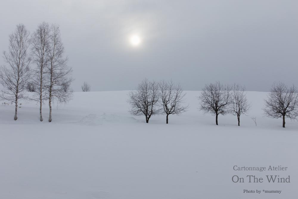 雪煙る、幻想的な白銀の丘、北海道美瑛へ!_d0154507_12514507.jpg