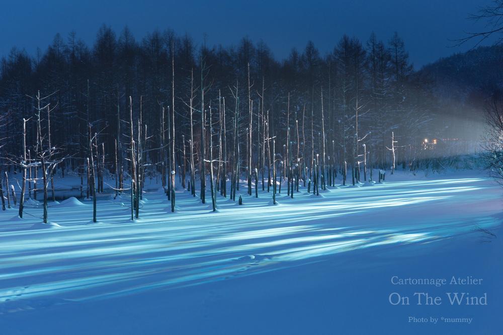 雪煙る、幻想的な白銀の丘、北海道美瑛へ!_d0154507_12523808.jpg