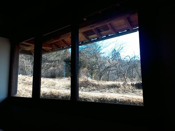 小鳥の樹 洋食屋さん_c0263809_23114865.jpg