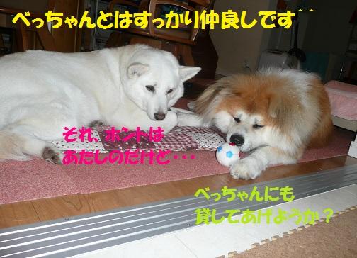 f0121712_924578.jpg