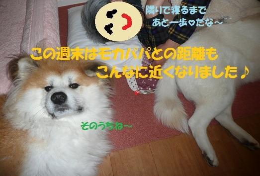f0121712_9385068.jpg