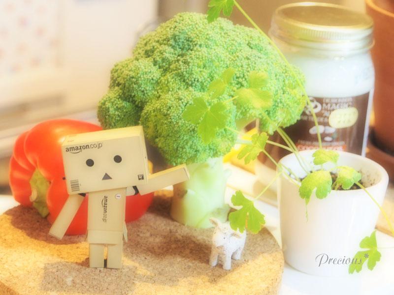 野菜の森。_c0101341_228568.jpg