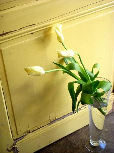 春いっぱい。。。_a0229658_12301979.jpg
