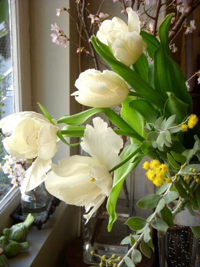 春いっぱい。。。_a0229658_9201858.jpg