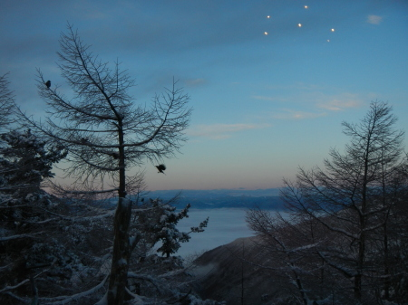 雪降りの朝_e0120896_08012402.jpg