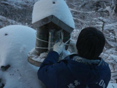雪降りの朝_e0120896_08013787.jpg