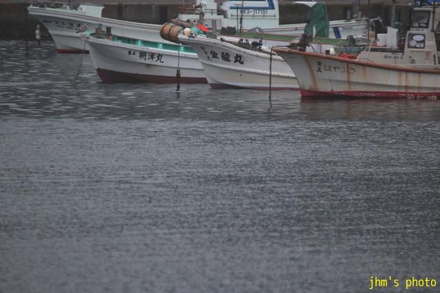 住吉漁港と入舟漁港、そしてそれぞれから見た函館山_a0158797_2322528.jpg