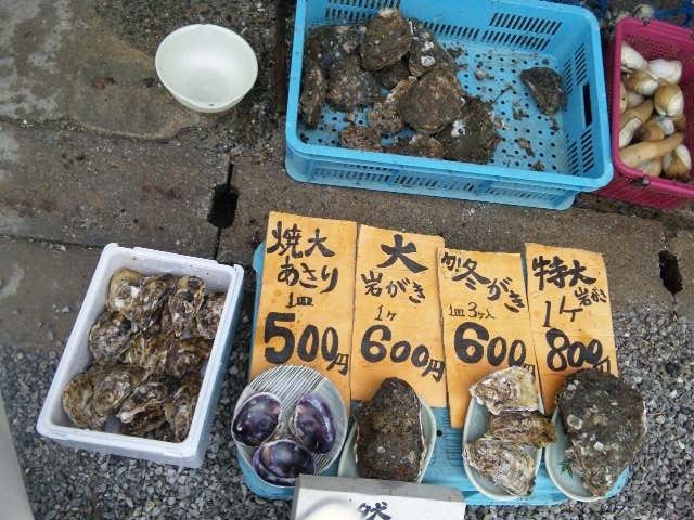 伊良湖岬までドライブ観光しました♪_c0316026_14050919.jpg